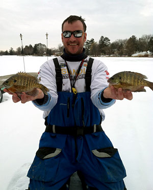 Raymond Tiffany with two big bluegill caught while ice fishing with Skandia tungsten jigs