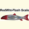Red Head White Flash Scale Sucker Spearing Decoy 100
