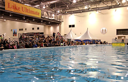A main attraction Lake Ultimate at the Ultimate Sport Show Grand Rapids is the center of free fishing seminars, the Ultimate Air Dogs and more!