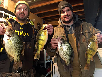 Two ice fishing anglers with big crappie and perch